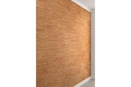 Décoration Moderne Pour Salons Cuisines Salles De Bain Apricot_Brick
