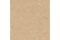 WISE CORK AMORIM - Parquet en liège écologique - Shell Marfim